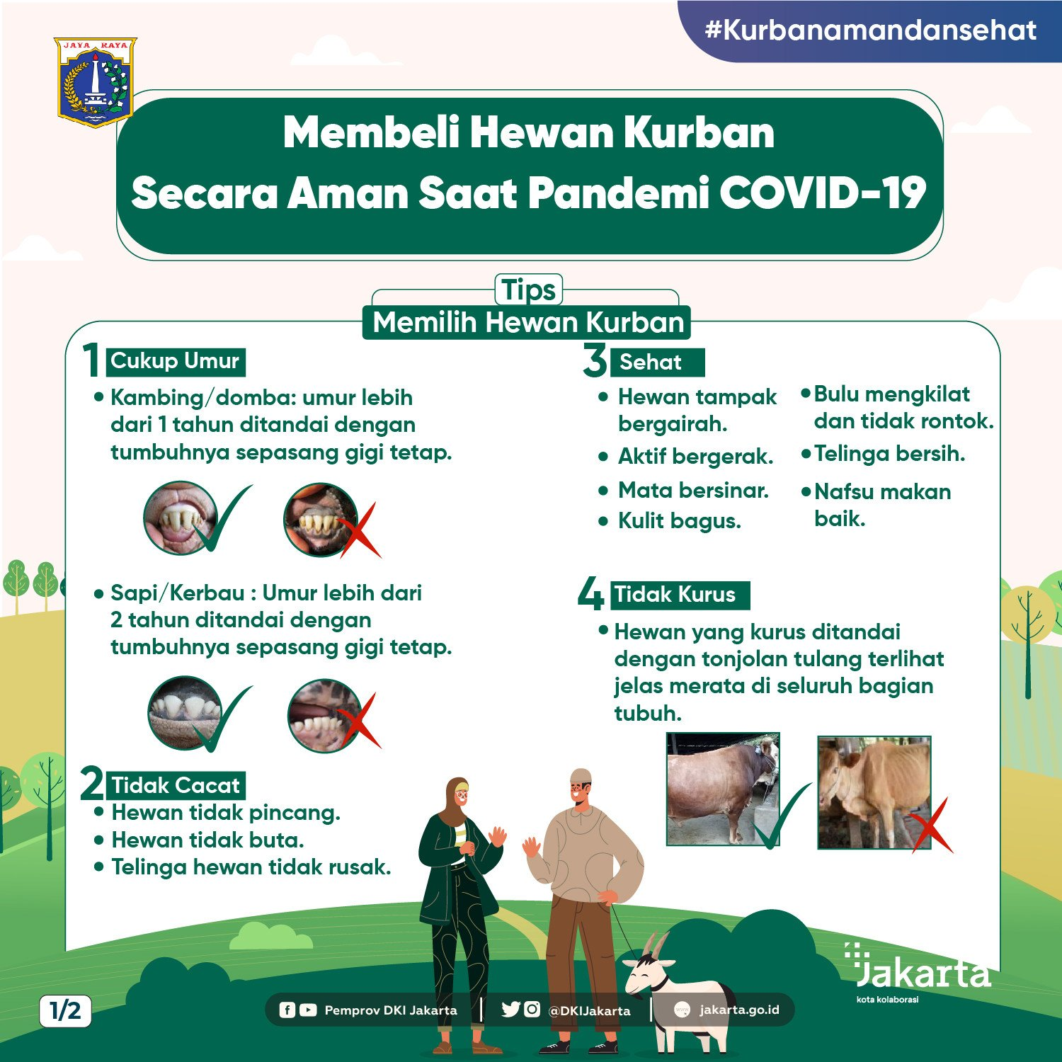 Buying Sacrificial Animals Safely During the Covid-19 Pandemic